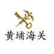 黄埔海关-POLYV保利威的合作品牌