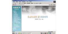 Sunlike BI的功能截图