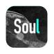 Soul-知乎的合作品牌