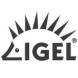 IGEL-Ivanti的合作品牌