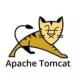 apachetomcat-游龙科技的合作品牌