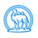 骆驼酒业-拍拍看的合作品牌