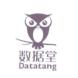 datatang-极限元的合作品牌