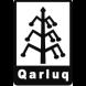 卡尔罗媒体科技Qarluq-金融魔方的合作品牌