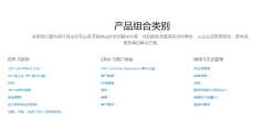 SAP-CRM的功能截图