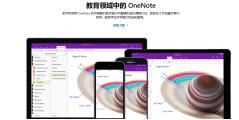 Microsoft OneNote的功能截图