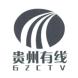 贵州广电-同洲电子的合作品牌
