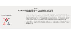 Oracle BIEE的功能截图
