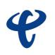 中国电信-31会议的合作品牌