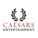 凯撒娱乐-SalesForce的合作品牌