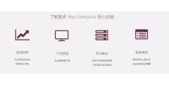 Wyn Enterprise的功能截图