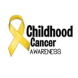 儿童癌症项目-SAS BI的合作品牌