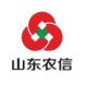 山东农信-DevSuite的成功案例