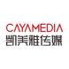 凯美雅传媒-daydao的合作品牌